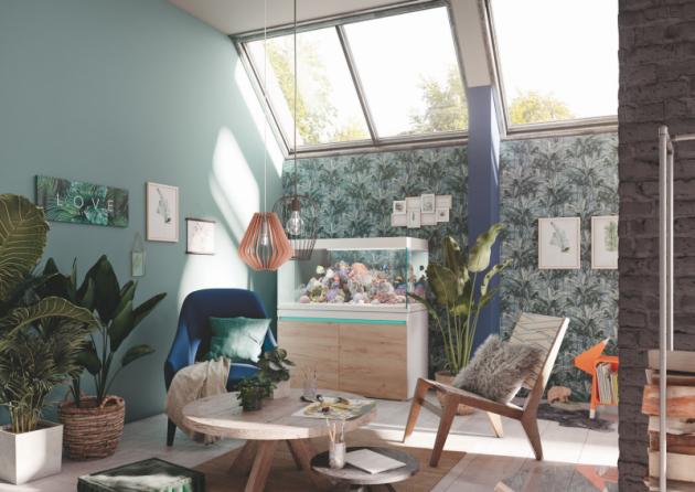 Urban Jungle – domov jako dobíječ energie