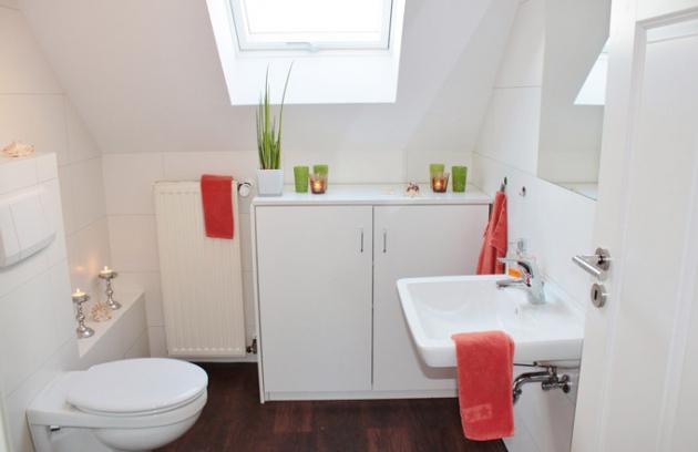 Existuje mnoho rad a tipů, jak se rozhodnout pro správnou volbu vany, umyvadla, koupelnového nábytku a dalšího vybavení. Jen málo informací však nejdete o toaletě, u které je dobrý výběr však neméně důležitý.