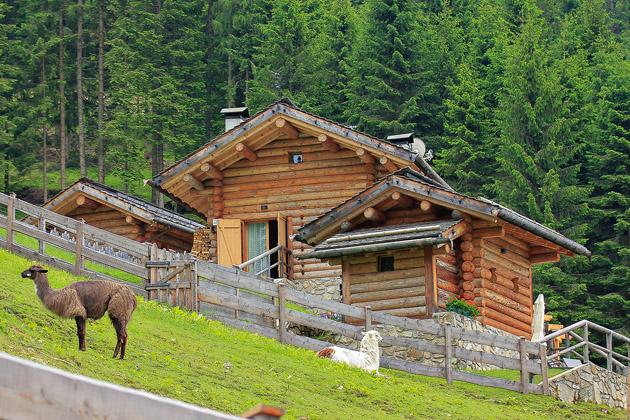 Oblíbenou aktivitou v této krajině jsou horské treky slamami organizované hotelem