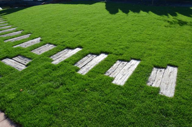Betonová dlažba do zahrady? Rozhodně ano!