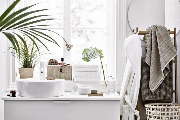 Rostliny v koupelně ještě více umocní pocit osvěžení, pro který si do ní chodíme.