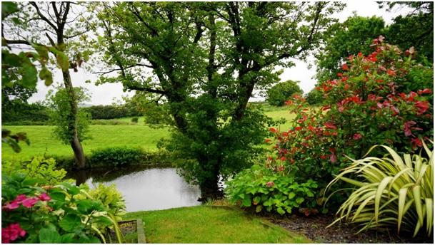 Jak udělat ze zahrady oázu klidu?