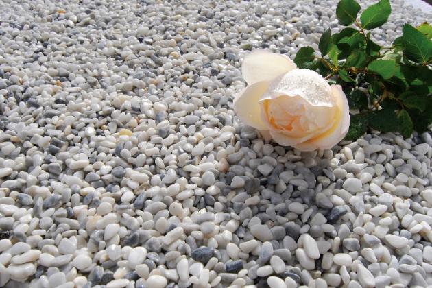 Maltu nahrazuje směs zeminy, štěrku a písku, která slouží jako drenáž. Na stavbu můžete použít různé druhy lomového kamene, skály, bludné balvany, pramenné kameny nebo kamenné desky. Jelikož kámen je přírodní materiál, hodí se tento typ zídky především do rustikálních či ekologicky laděných zahrad.