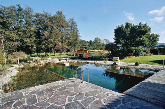 Vyšším stupněm zahradních jezírek jsou jezírka koupací, která zároveň plní funkci bazénu. Nejvyšší kvality v tomto oboru dosahují v Evropě jezírka OASE,  www.oase-filtrace.cz