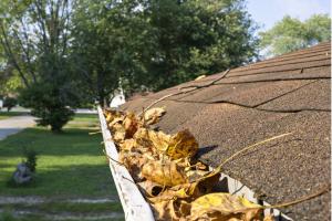 Aby střecha mohla dobře plnit svou funkci při ochraně domu před zimní nepohodou, je třeba ji na podzim důkladně zkontrolovat a všechny defekty hned v zárodku odstranit a vyřešit.