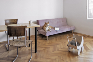 Jídelní retro židle s ohýbanou trubkovou konstrukcí perfektně sednou do bytu v domě z první republiky. Jsou to rodinné kousky, které si přinesla majitelka