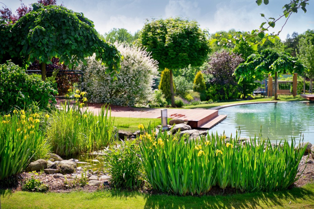 Při budovánívlastnízahrady máte dvě možnosti – buď své přání svěříte do rukou zahradního architekta nebo se do práce pustíte sami.