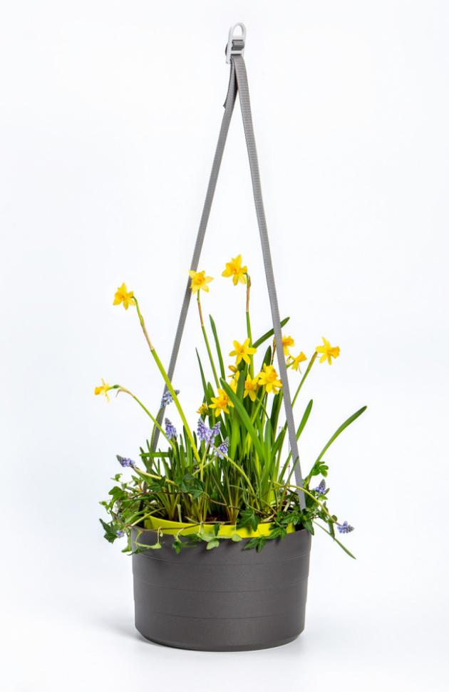 Doporučená cena závěsného květináče BERBERIS (Plastia) s průměrem 26 cm je 449 Kč, větší model, s průměrem 30 cm, stojí 499 Kč. K dostání jsou 4 barevné variace.