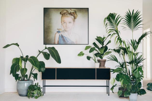 Dánský výrobce přidává do nabídky řadu Lemus Home pro špičkové domácí ozvučení.