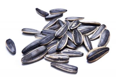 Na podzim sesbírejte semena pro výsev na příští rok