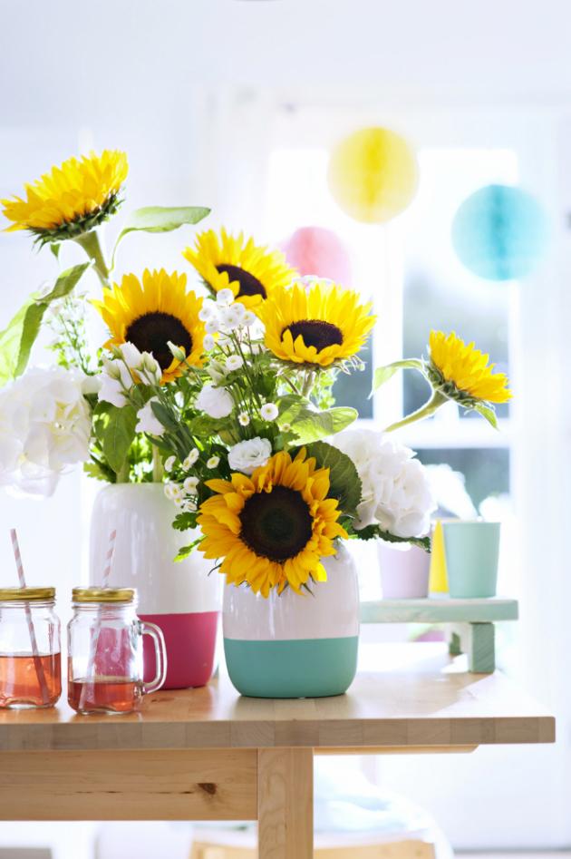 Slunečnicím to v truhlíku či květináči bude slušet vedle červených letniček, žlutooranžových afrikánů nebo v kombinaci s modrým nestařcem či lobelkou a ve váze krásně doplní jakákoli bílá kvítka...