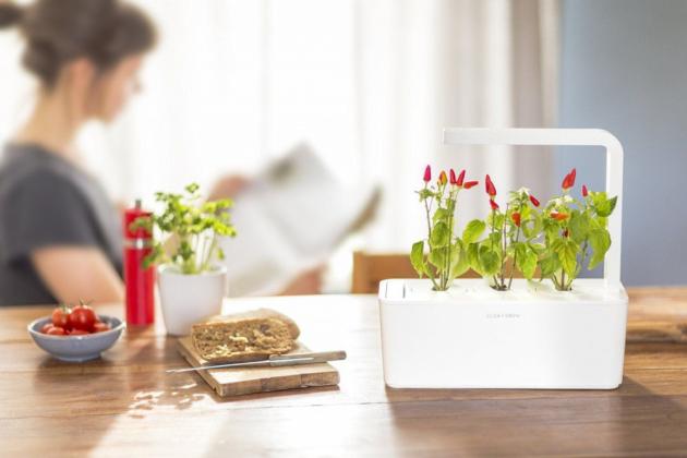 www.gardentrading.co.uk