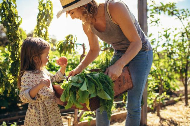 Dospělí tráví hodně času činnostmi, ze kterých jsou děti vyloučeny. Do zahradničení je však možné zábavnou formou zapojit i ty nejmladší členy domácnosti a nechat je plnohodnotně pomáhat, stačí jen správná motivace